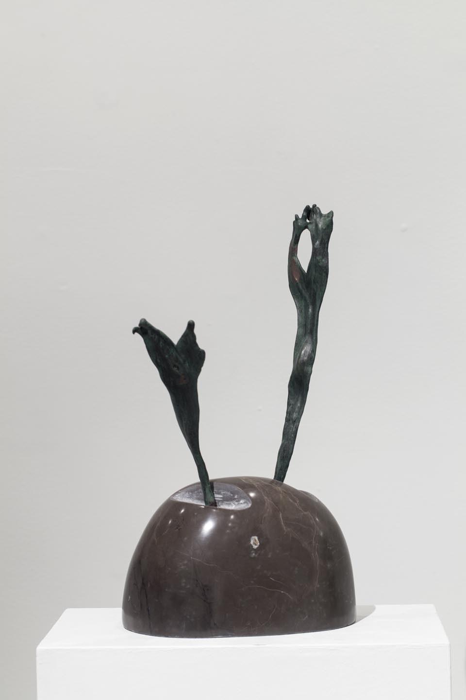 Alina-Canziani_-Fuego-Vegetal-ST-07_marmol-y-bronce_H43CM_-2015